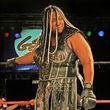 Ihr Weg führte sie in die WWE, allerdings nicht lange, denn sie fiel durch ihre Schwangerschaft aus