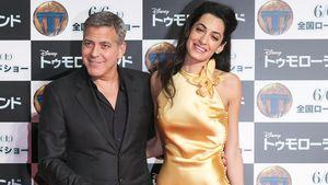 George und Amal Clooney strahlen