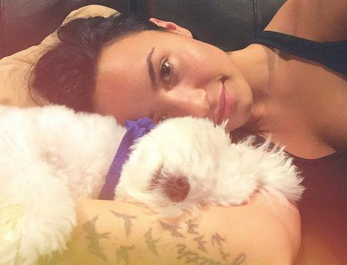 Demi Lovatos Hund ist gestorben