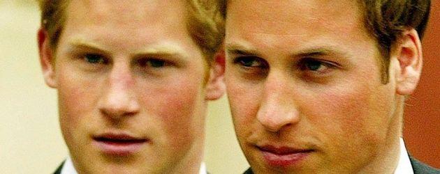 Prinz William und Prinz Harry zusammen