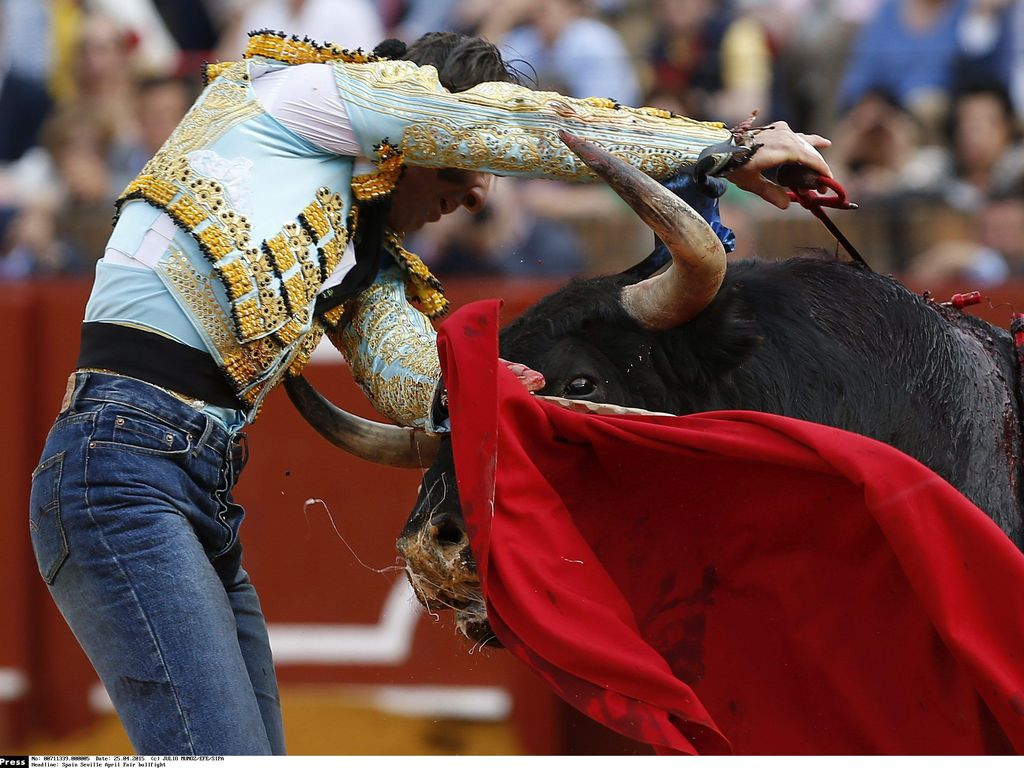 Torero Juan Jose Padilla beim Stierkampf in Sevilla