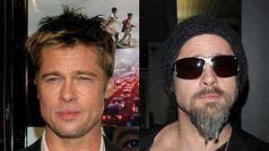 Brad Pitt und Co. bekennen sich zum Bart