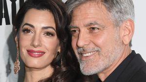 Wegen Amal: Leben von George Clooney machte 180-Grad-Wende