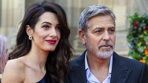 Nach Unfall: Amal verbietet George Clooney Motorradfahren