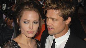 Erzählte Angelina Pax echt, dass Brad gegen Adoption war?