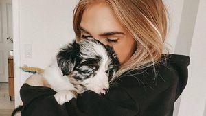 Hundewelpe: Baby-Generalprobe für Bloggerin Anika Teller?