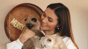 Zuchtkatzen? Anna Maria Damm wehrt sich gegen Kritiker