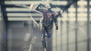 """Seht den Trailer! Hier wird Paul Rudd zu """"Ant-Man"""""""