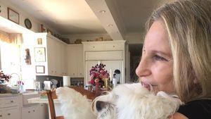 Ihr Hund ist tot: Barbra Streisand findet Worte der Trauer!