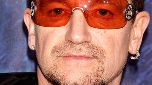 """""""Spider-Man"""": Neue Spinnenart nach U2-Bono benannt"""