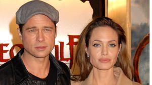 Brad Pitt und Angelina Jolie, Schauspieler