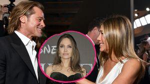 Insider: Was sagt Angelina Jolie zu Brad & Jens Reunion?