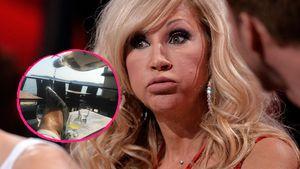 Carmen Geiss, Reality-TV-Star