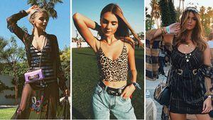 Im Coachella-Fieber: So feiern die Netz-Stars das Event!