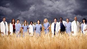 """Der Cast von """"Grey's Anatomy"""""""