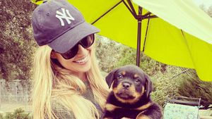 Nach Trennung: Christina Anstead schafft sich einen Hund an