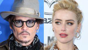 Kot im Ehebett: Trennte sich Johnny Depp darum von Amber?