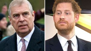 Wurde Skandal um Prinz Andrew gegen Prinz Harry eingesetzt?