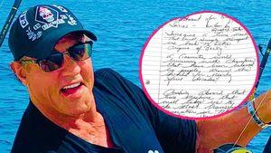 """Neue """"Rocky""""-Serie geplant – Sylvester schreibt am Drehbuch"""