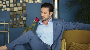 Bachelor-Fans fordern: RTL, hört auf mit den Spoilern!