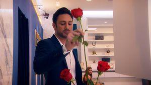 IHRE Rose hat Bachelor Daniel Völz nicht freiwillig vergeben