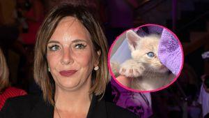 Danni Büchner sorgt nach dem Tod ihrer Katze für Shitstorm