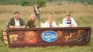 Gefährlichste Show ever! DSDS-Recall im Busch mit Wildtieren