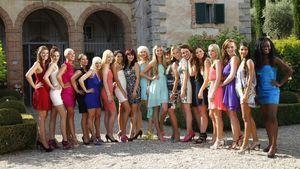 """Bissig: """"Catch the Millionaire""""-Girls zeigen Zähne"""