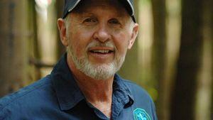 Dr. Bob findet Giftschlangen: Sind Dschungelstars in Gefahr?
