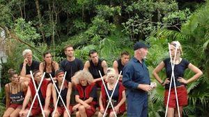 Voting-Halbzeit: Wer wird Dschungelkönig?