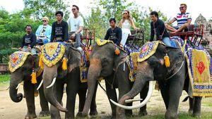 1. Recall-Bilder: DSDS-Jury reitet auf Elefanten