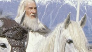 "Traurig: Gandalfs Pferd ""Schattenfell"" ist tot!"
