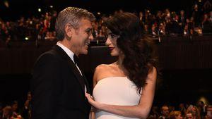 George und Amal Clooney