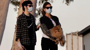 Verturtelt: Kate Beckinsale mit ihrem Freund (22) unterwegs