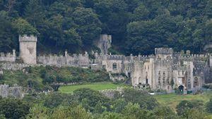 Vor UK-Dschungelcamp-Burg: Frau bei Horror-Crash getötet