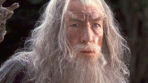 """Klare Absage von HdR-Star: """"Gandalf macht keine Hochzeiten"""""""