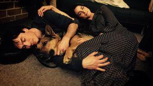 Nikki Reed & Ian Somerhalder trauern um ihre tote Hündin!