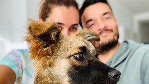 Nach Tod von Hund Tyson: Zarrellas haben neuen Vierbeiner