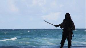 Fluch der Karibik: Captain Jack is Back!!!