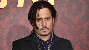Wegen Trump-Morddrohung: Wird Johnny Depp jetzt entlassen?