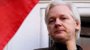 Julian Assange: Brief an Benedict Cumberbatch