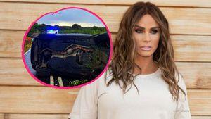 Erste Fotos vom Mega-Crash: Das ist Katie Price' Unfallwagen