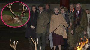 Schockierend: Dänen-Royals posieren vor toten Hirschen!