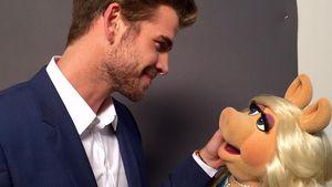 1. Foto mit Miss Piggy! Liam Hemsworth ist nun bei Instagram