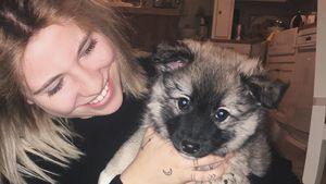 Hunde-Mama: YouTube-Star Melina Sophie hat einen Welpen