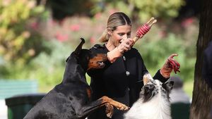 Zauberhaft: Michelle Hunziker tobt ausgelassen mit Hunden