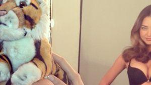 """""""Grrr"""": So animalisch ist das Model Miranda Kerr"""