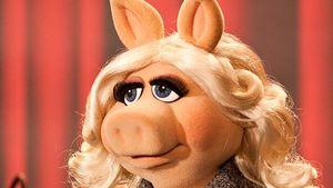 Sau komisch: Miss Piggy bekommt Preis für Emanzipation