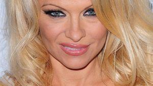 """Pamela Anderson steht auf """"Freundschaft-Plus"""""""