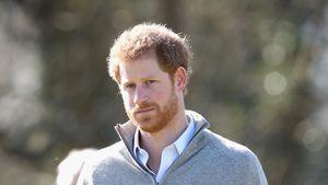 Prinz Harry beim Besuch des Epping Forest in Epping, England